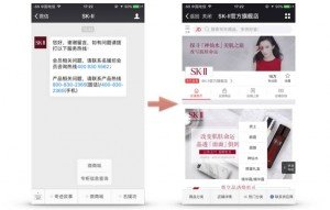 SKII-wechat-store-official-account-ecommerce