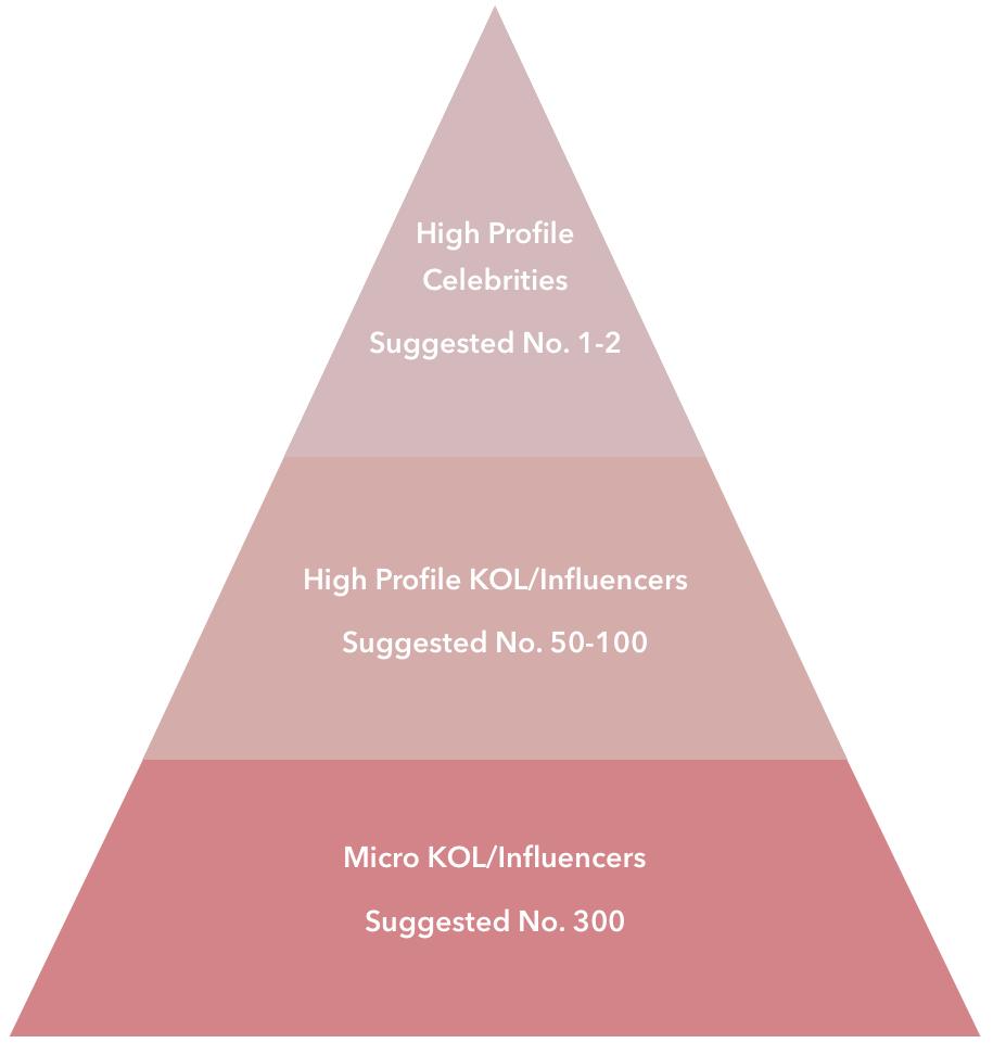 chinese app xiaohongshu strategy kol infographic